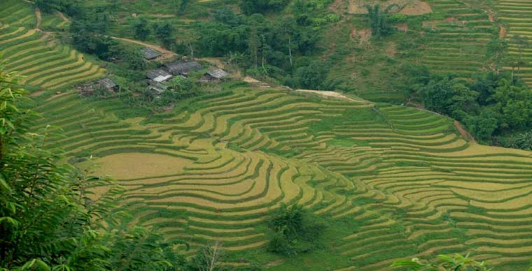 Top 10 what to do in Sapa