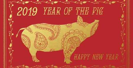 2019 Ky Hoi Lunar New Year - Year of the Pig
