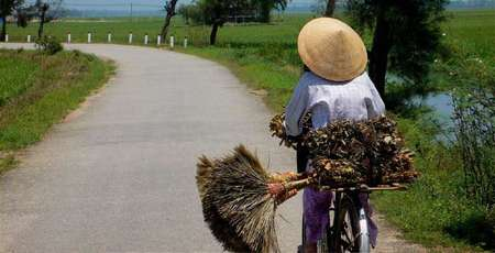 Go cycling in the countryside of Hue City