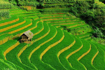 Top 10 activities in Sapa