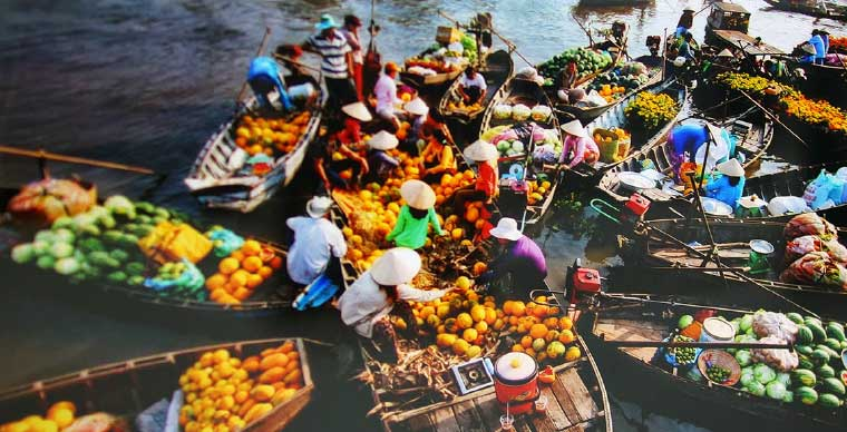 The 3 most attractive routes for visiting Mekong Delta in the flooding season