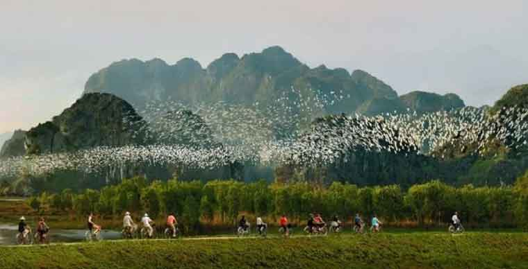 Thung Nham Bird Gardens - Ninh Binh Travel Guide