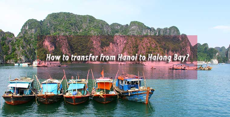 How to transfer from Hanoi city to Halong Bay