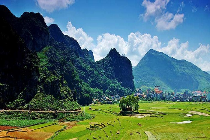 Visit Ha Giang in 3, 4 or 5 days, what to see and do?
