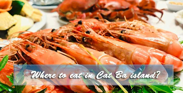 Where to eat in Cat Ba Island?