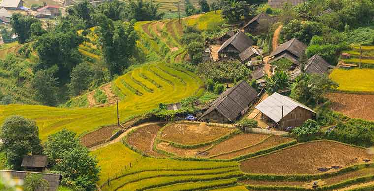 Why travel to Vietnam ?