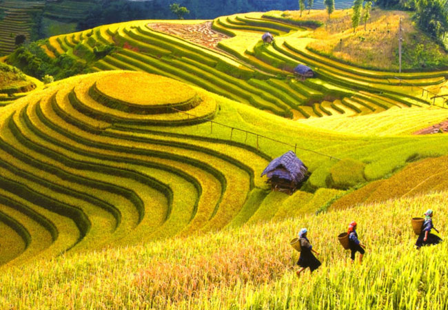 10-unmissable-destinations-this-summer-sapa