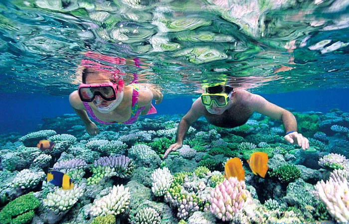 12-unmissable- experiences- in-phu-quoc-island-diving-in-an-nam-island