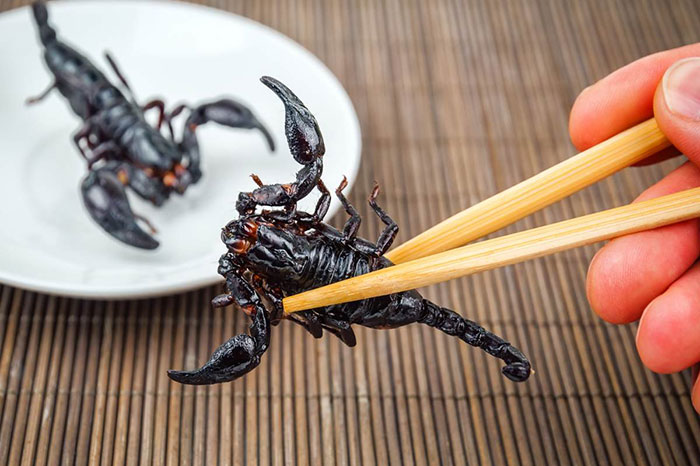 atypical vietnamese dishes insects