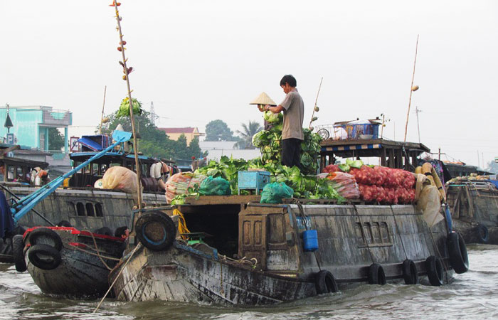 cruise on mekong delta on 2 3 4 or 5 days floating market