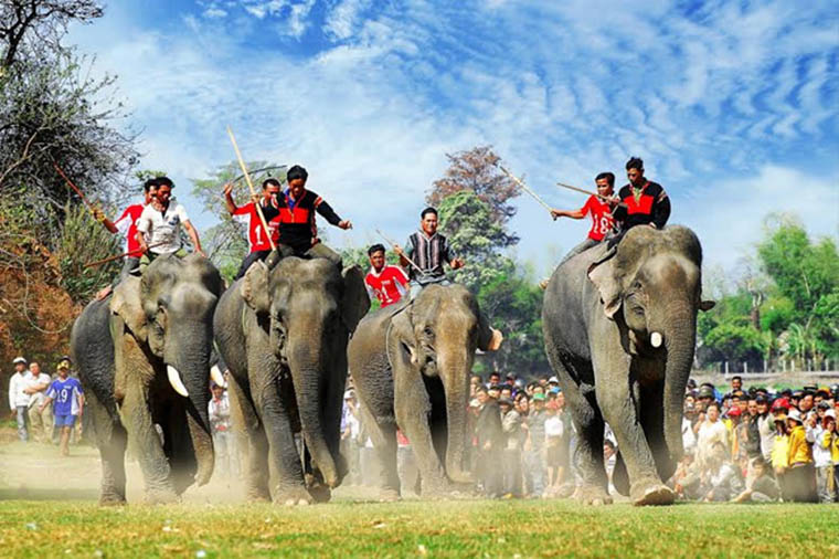 festivals in Vietnam elephant race