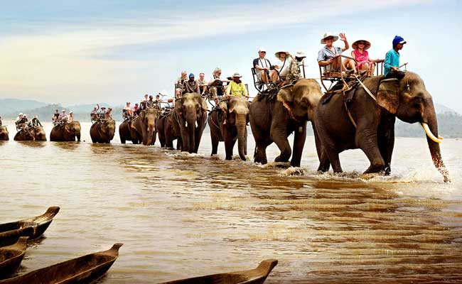 lak lake vietnam elephant ride