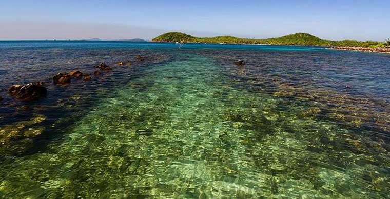 may-rut-island-phu-quoc-coral-reef