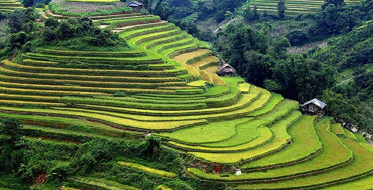 top-10-must-see-sites-in-viet-nam