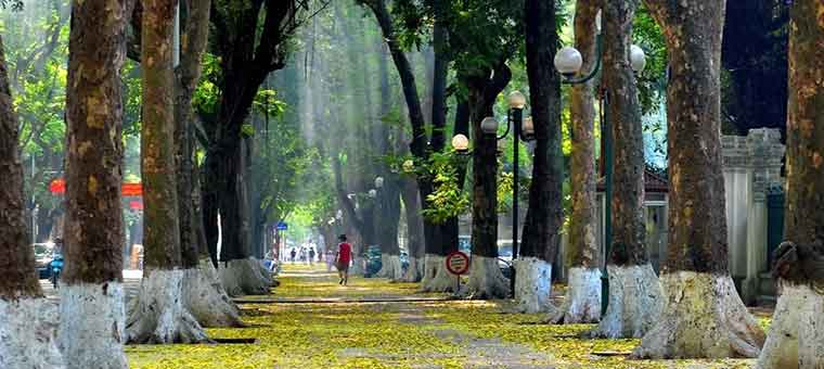 phan dinh phung street in hanoi city