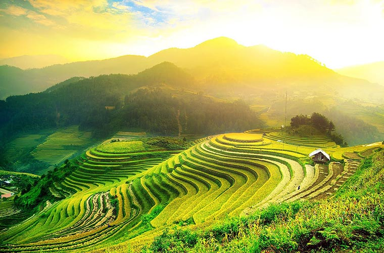 places-you-must-see-in-Ha-Giang-hoang-su-phi