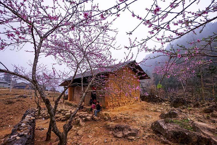 places-you-must-see-in-Ha-Giang-pho-bang-ha-giang