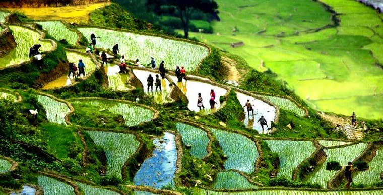 ta-phin-village-what-to-to-in-sapa