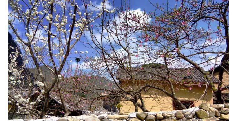 thien-huong-ancient-village-dong-van-ha-giang