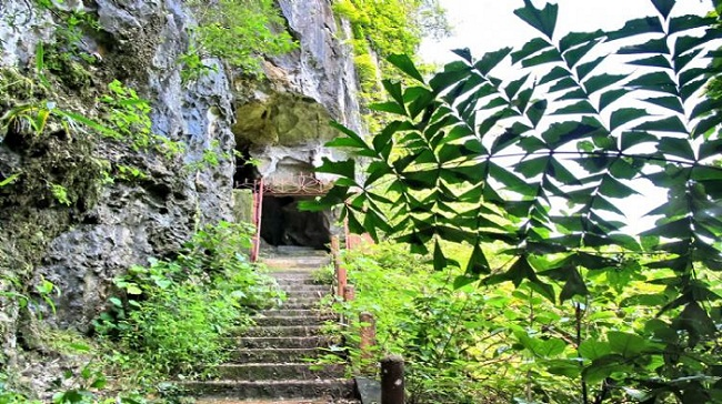 trung trang cave cat ba island forest