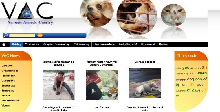 animal-adoption-hanoi