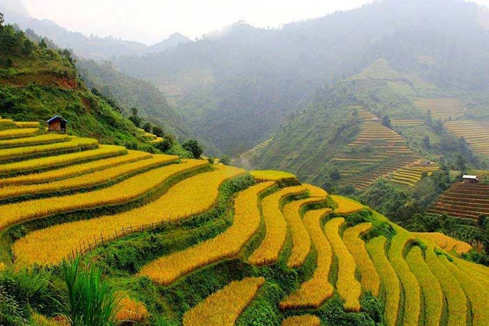 visit bac ha in 1, 2 or 3 days rice terraces