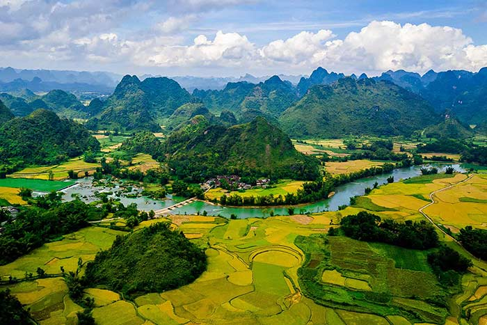 what to do and see in cao bang rice fields