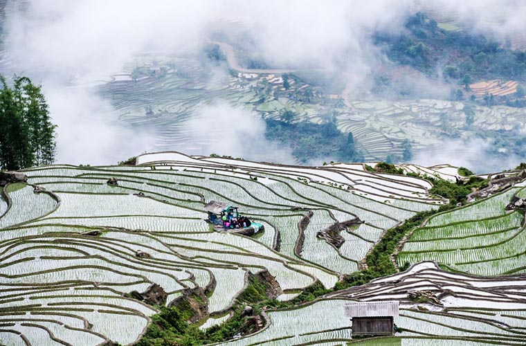 wonderful-rice-terraces-in-Sapa-vietnam-rainfall-season.jpg