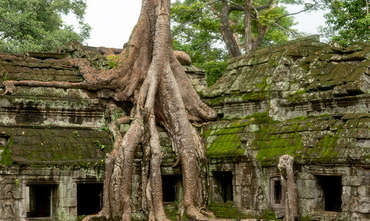 Secret of Angkor Temples